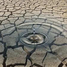 Ilustracja do informacji: Ogłoszenie Burmistrza Otynia w sprawie suszy
